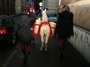 Állatok Mikulása a belvárosban és az Akvárium-Terrárium