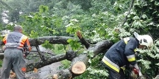 Károkat okoz az erős szél az ország északkeleti részén