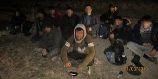 Tizenkét határsértőt tartóztattak fel a Mohácsi-szigeten
