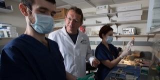 A pécsi egyetem kutatói is részt vettek egy új fájdalomcsillapító kifejlesztésében