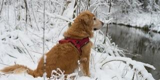 A tél legerősebb lehűlésére figyelmeztetnek