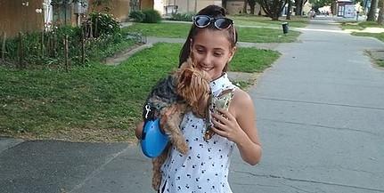 Ajándékkal jutalmazzák ezen a héten a kutyapiszkot felszedő gazdikat Kertvárosban