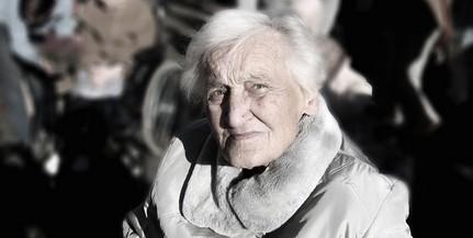 Herpeszvírusok állhatnak az Alzheimer-kór hátterében