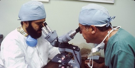 Gyógyszerfejlesztés zajlik a Pécsi Tudományegyetemen