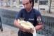Kiscicát mentettek ki a Munkácsy utcában a csatornából pécsi tűzoltók