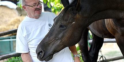 Nyomot hagyna a jövőnek Balázs József, az ország egyik legnépszerűbb lovas szakembere