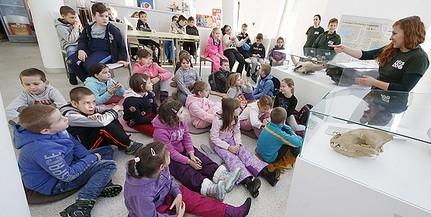 Megkezdődött az élményekben gazdag tanulás az állatkertben, 13 ezer gyermeket várnak