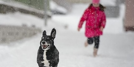 Hideg marad az idő: havazásra, viharos szélre, fagyokra számíthatunk a héten