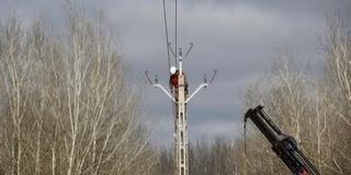 Madárbaráttá alakítják a vezetékeket a Duna árterében