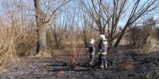 Ismét a szabadtéri tüzek adtak munkát a tűzoltóknak
