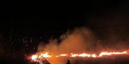 Három hektáron égett a gaz a Cserdi-Szőlőhegyen
