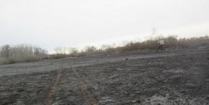 Erdőt, nádast tarolt le egy újabb tűzeset Baranyában