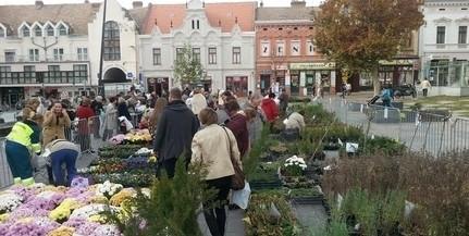 Újra lesz virágvásár a Kossuth téren, Páva Zsolt mediterrán növényeket is árul