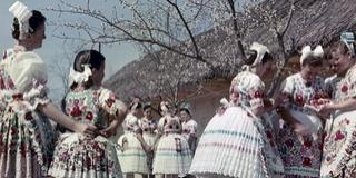 Locsolkodás, hímes tojás - Nézegessen régi képeket a húsvéti népszokásokról