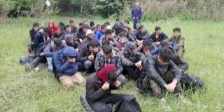 Negyvenöt migránst kapcsoltak le a határvédők Hercegszántónál