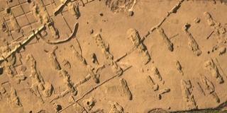 Először állítják ki az M6-os építése során Baranyában előkerült 7000 éves leleteket