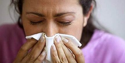 Hapci!!! Rossz napok várnak az allergiásokra