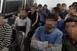 Két csoportban 19 migránst fogtak el Hercegszántónál éjjel
