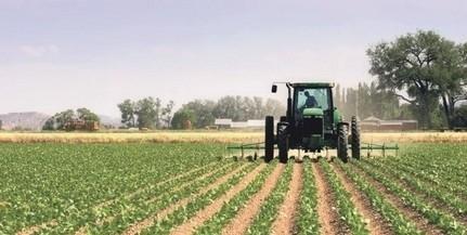 Nőtt a növénytermesztés és az állattenyésztés teljesítménye tavaly