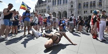 Meleg a pite: Pécsett is parádéznak a homoszexuálisok, várják az önkénteseket