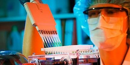 Álhírek helyett tények a koronavírusról - pécsi kutatók összegzése