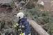 Szerdán sem kímélte a vihar a megyét, folyamatosan dolgoztak a tűzoltók
