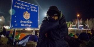 Begyűjtötték a szerbek a határnál táborozó migránsokat