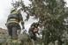 Kidőlt fák, oszlopok, elzárt utak - Így pusztított a vihar hétfőn Baranyában