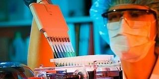 Megkezdi a potenciálisan vírusellenes hatóanyagok tesztelését a vírust kutató akciócsoport