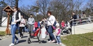Szombaton kinyit a pécsi állatkert - Maszkban, egyszerre legfeljebb négyszázan mehetnek be