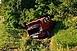 Baleset Baranyában: árokba hajtott és felborult egy autó