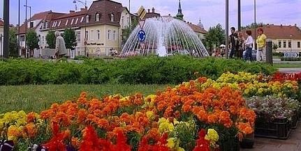 A közönség is szavazhat idén a Virágos Magyarországért versenyen