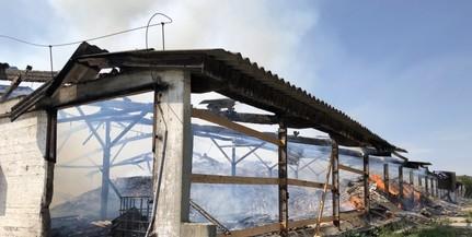 Több ezer köbméter szemét kapott lángra Belvárdgyulán