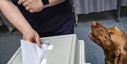 A Mi Hazánk saját polgármesterjelöltet indít Mohácson, augusztus 24-ig gyűjthetők az aláírások