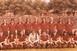 A Tettyén rendezték az első labdarúgó-mérkőzést, aztán öt pályát is használtak az élcsapatok