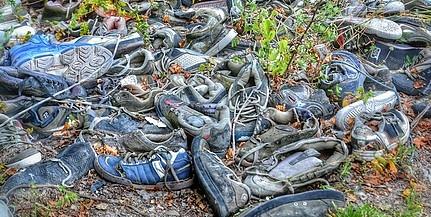 Megtisztítják az utak mentén elhelyezett hulladékhalmoktól Baranyát - Van mit elszállítani