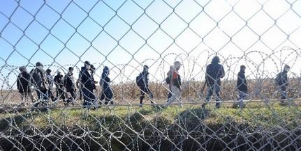Újabb migránsokat kaptak el Magyarbólyban