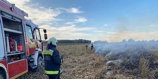 Kukoricatáblát veszélyeztetett egy baranyai tarlótűz