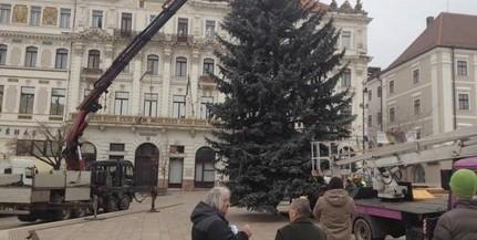 Hétfőn délelőtt állítják fel a Mindenki Karácsonyfáját
