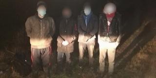 Ismét határsértőket tartóztattak fel Baranyában
