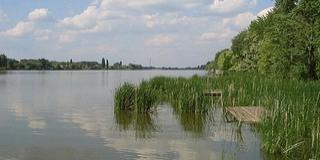Halálos hajóbaleset történt a Duna egyik mellékágán