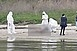 Holttestet vetett partra a Duna vasárnap délelőtt Mohácsnál, a szigeti strandon