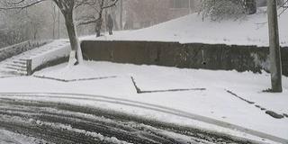 Ez van, április derekán: havazás miatt veszélyes kirándulgatni a Mecsekben