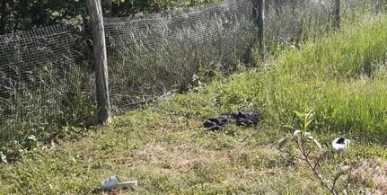 Füstben alvó nőt mentettek ki a pécsi rendőrök