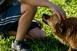Elgáncsolták a balliberálisok a belvárosi kutyafuttató ügyét - Szerintük felesleges