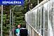 Megújul a PTE botanikus kertje, 180 milliót szánnak rá
