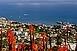 Madeira 89.900 Ft/főtől