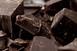 Medvék szenvedtek halálos csokoládémérgezést