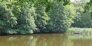 Megszabadítják a hordaléktól az Égervölgyi tavat, másfél méterrel csökken vízszint március végéig