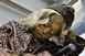 Egy ötéves kisfiú múmiáját állították ki Budapesten